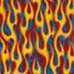 flames 211